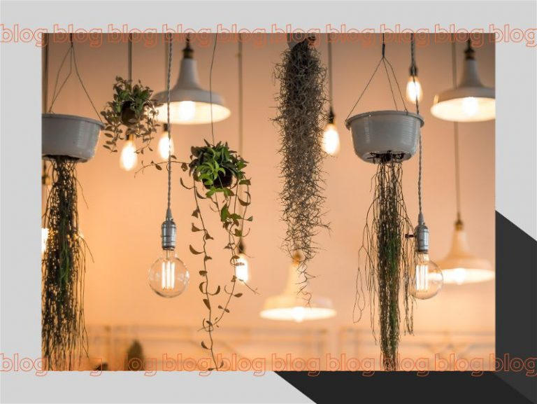 Luzes suspensas com decoração verde e luzes neutras